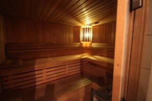 Club-Aphrodite-Roche-sauna-sexe